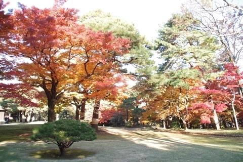 殿ヶ谷戸庭園の紅葉3