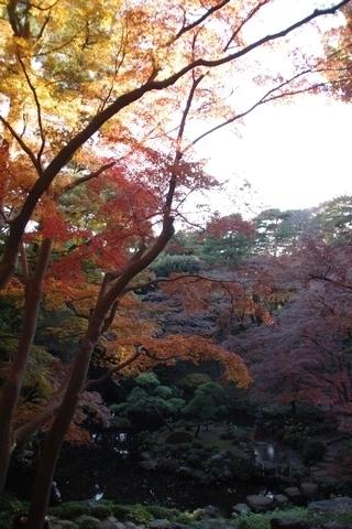 池の紅葉3