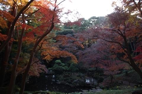 池の紅葉2